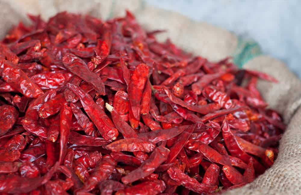 Dried chillies used in production of RASA natural spice products